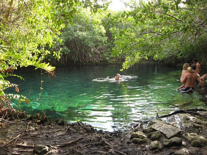 cenote,aguacristalina,playatulum